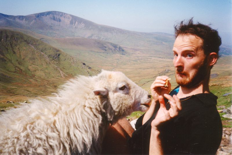 Dave and the sheep on Snowdon